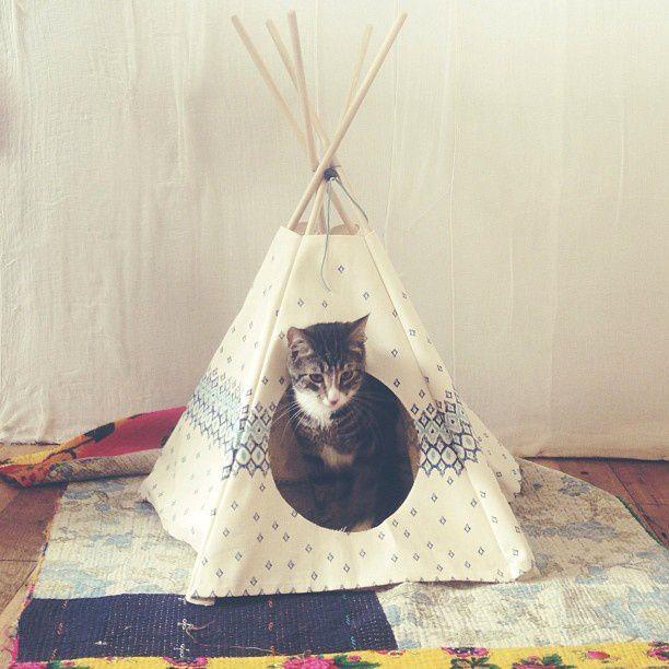 diy tipi pour chat diy pinterest chats animal et le chat. Black Bedroom Furniture Sets. Home Design Ideas