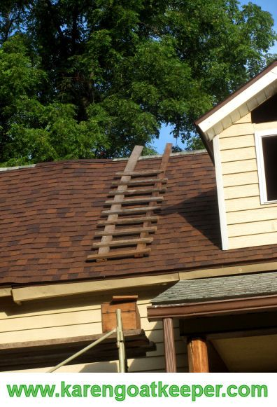 An Old Way To Stand On A Steep Roof Uses A Special Ladder This One Was Used When All Those New Shingles Went On And The Dormers Wer Roof Ladder Roof