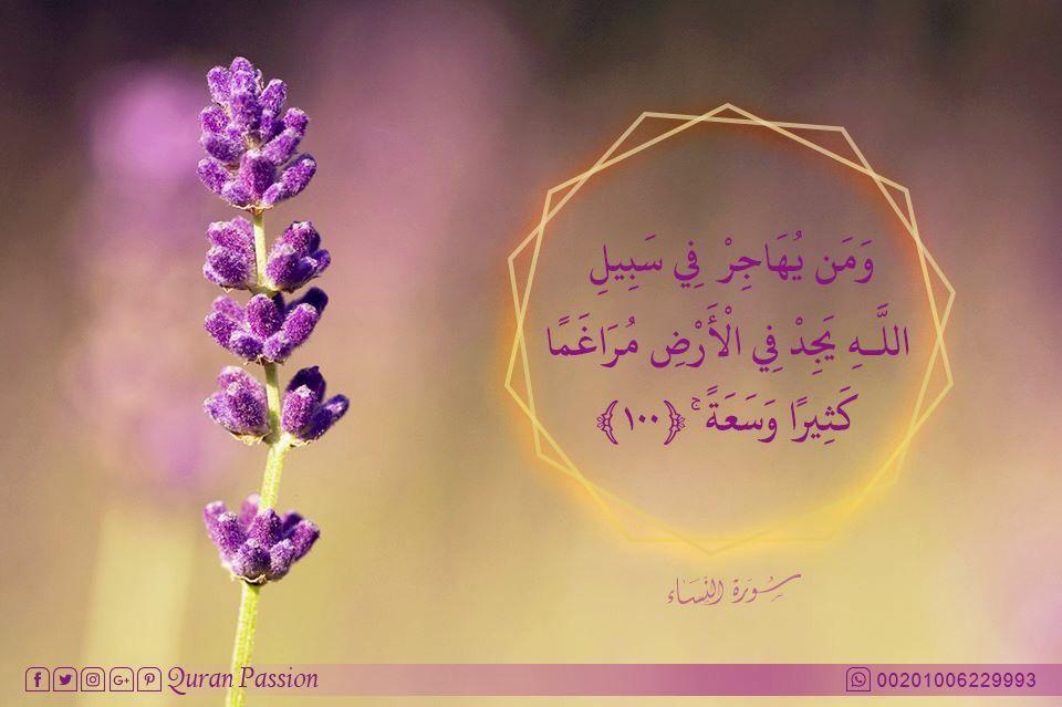 تاكد من ان كل خطوه تخطوها في الطريق الصحيح سوف يجزيك الله عليها اضعافا من السعاده والامان Quran Passion