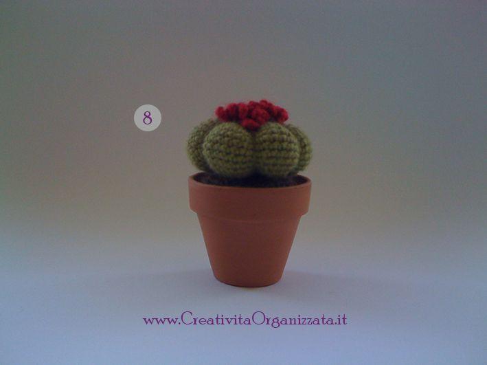 Schemi Piante Grasse Ad Uncinetto Spiegazioni In Italiano Uncinetto Piante Grasse Cactus All Uncinetto