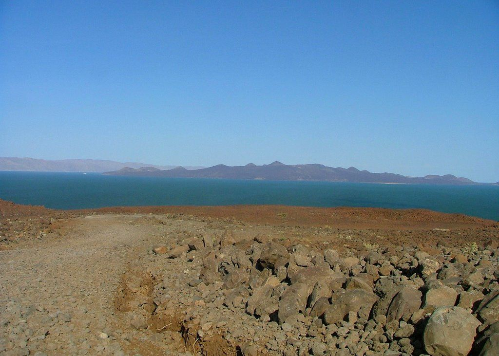 "Located in East Africa's Rift Valley, Lake Turkana, is the largest desert lake in the world. By volume it is also the world's third-largest salt lake. Widely known as ""the Jade Sea"", due to the remarkable, almost incandescent, color of its waters; the surrounding area is regarded by many anthropologists as a cradle of humankind due to the abundance of hominid fossils."
