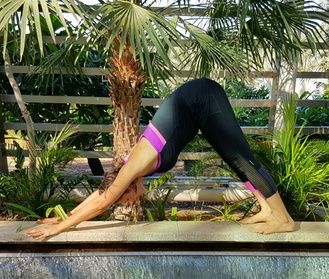 Four Eight Or Sixteen 60 Minute Outdoor Yoga Classes With Anaadi Mushrif
