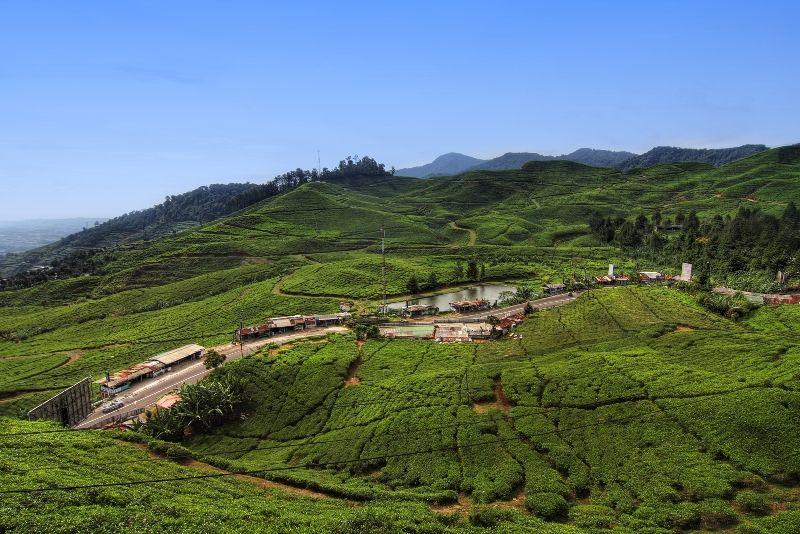 Puncak adalah nama sebuah daerah wisata pegunungan yang