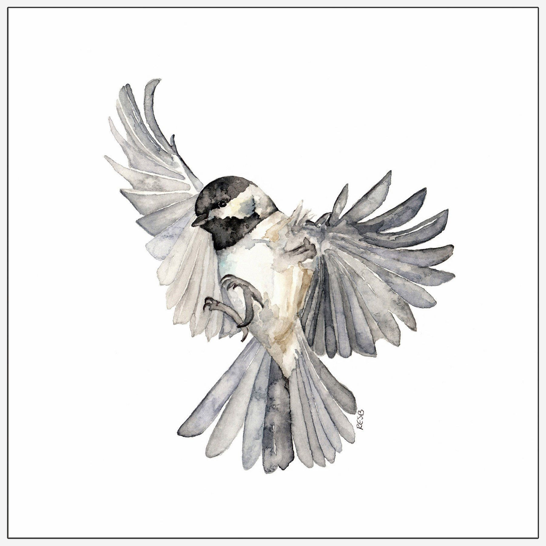 Image result for chickadee tattoo   Flying bird tattoo ... - photo#23