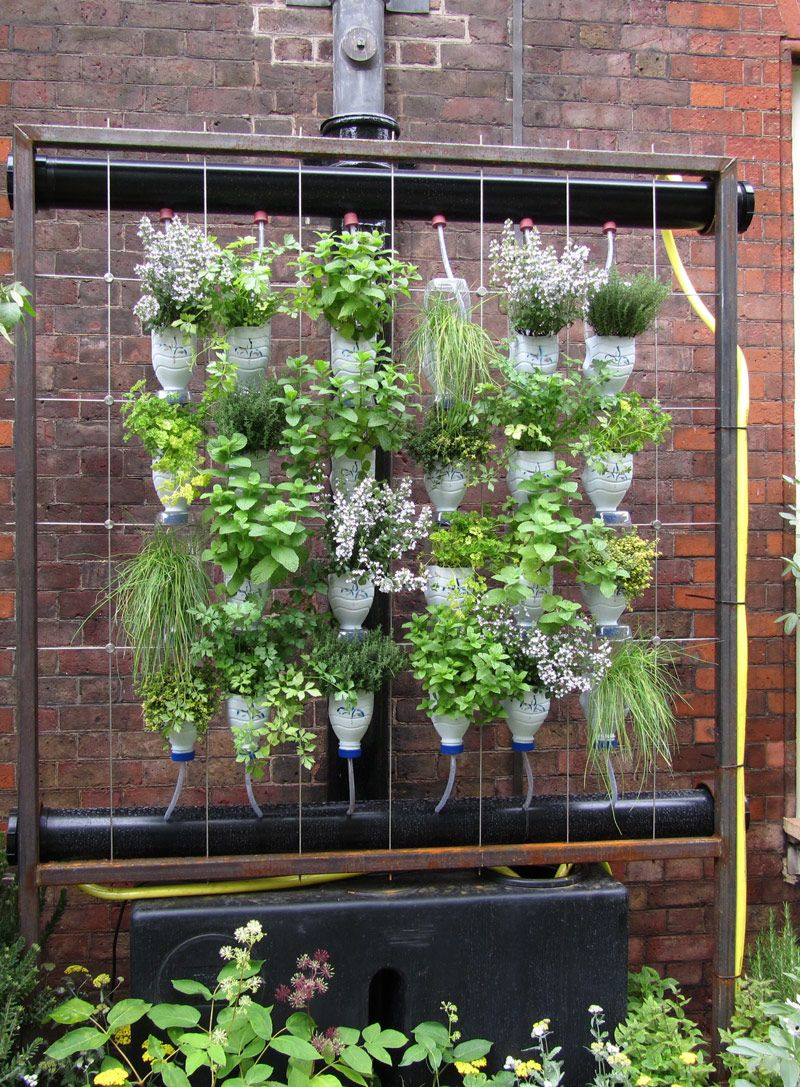 Image Detail For -Vertical Garden With Milk Bottles