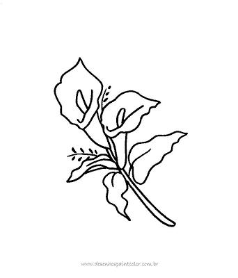Desenho De Flor Para Colorir Ou Reproduzie Em Pano De Prato