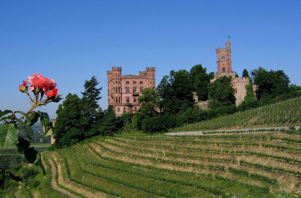 Aussenansicht Djh Jugendherberge Schloss Ortenberg Herberge Ortenberg Kurzurlaub