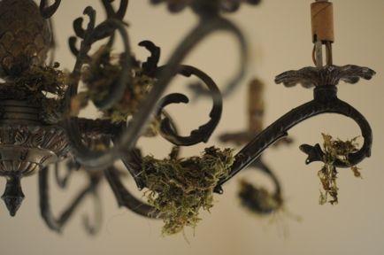 haunted home use moss as creepy decor Holidays Pinterest - classy halloween decor