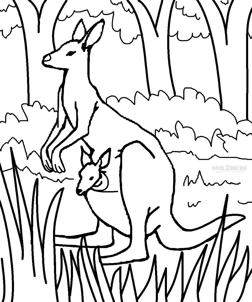 The Most Curious Part Of A Kangaroo S Life Is How The Females Care For Their Babies As They Go Thr Coloring Pages Coloring Books Kids Printable Coloring Pages