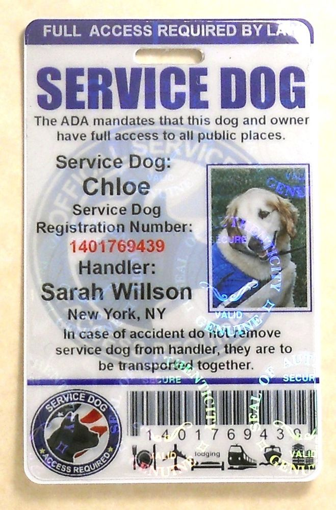 Details About Holographic Service Dog Id Card For Service Animal