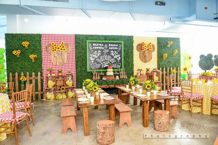 partyscape from minnie mouse sunflower garden party at karas party ideas