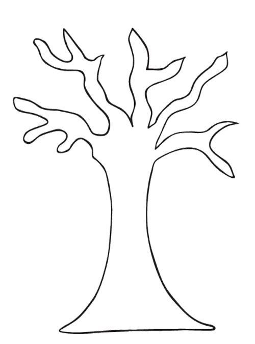 Bare Tree Coloring Page Tree Pattern Without Leaves Lots Others