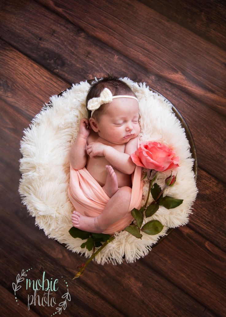 Inspiration For New Born Baby Photography : Cute idea for a baby named Rose! Newborn Girl in Round Basket with White Fluff, ... - Photography Magazine | Leading Photography Magazine, bring you the best photography from around the world