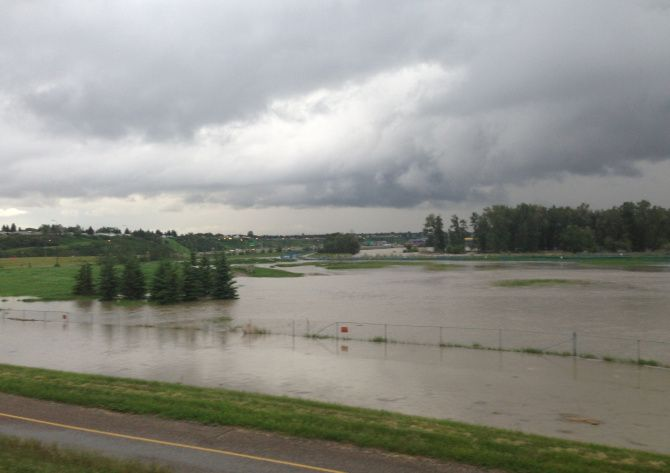 Flooding in Southland dog park. Courtesy of Chris Whitwell