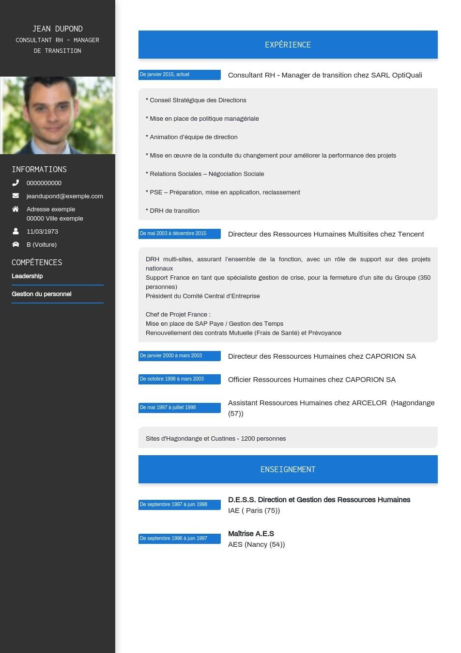 Write A Professional Cv Easily Cv Builder Professional Cv Cv Template Professional Writing A Cv