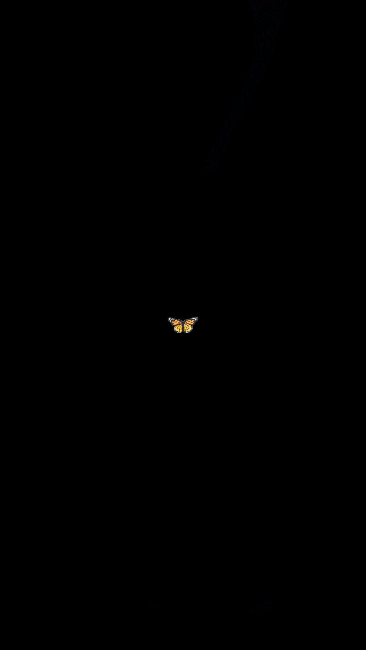 Butterfly Tapetti In 2020 Black Aesthetic Wallpaper Black Background Wallpaper Cute Black Wallpaper