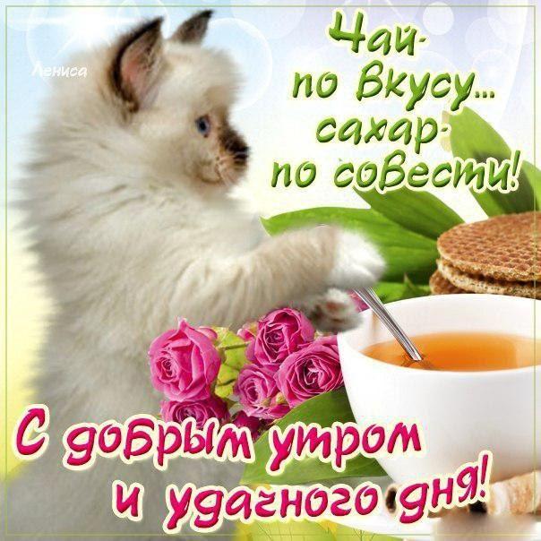 фото открытки с добрым утром