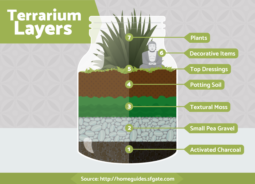 Photo of Terrariums Are The Coolest