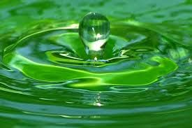 Image Result For Macro Photography Water In Motion