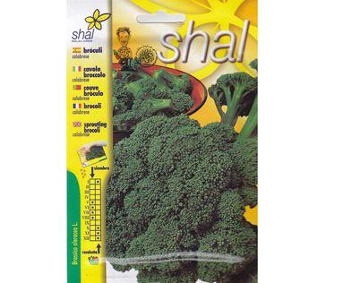Shal Sprouting Broccoli Fresh Flower Bouquets Buy Plants Dubai Garden