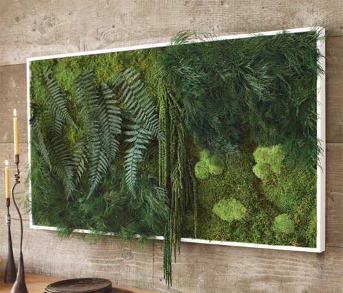 12x P Inspiratie Voor Een Muur Vol Planten Elle Decoration Nl Muur Plant Tuinmuur