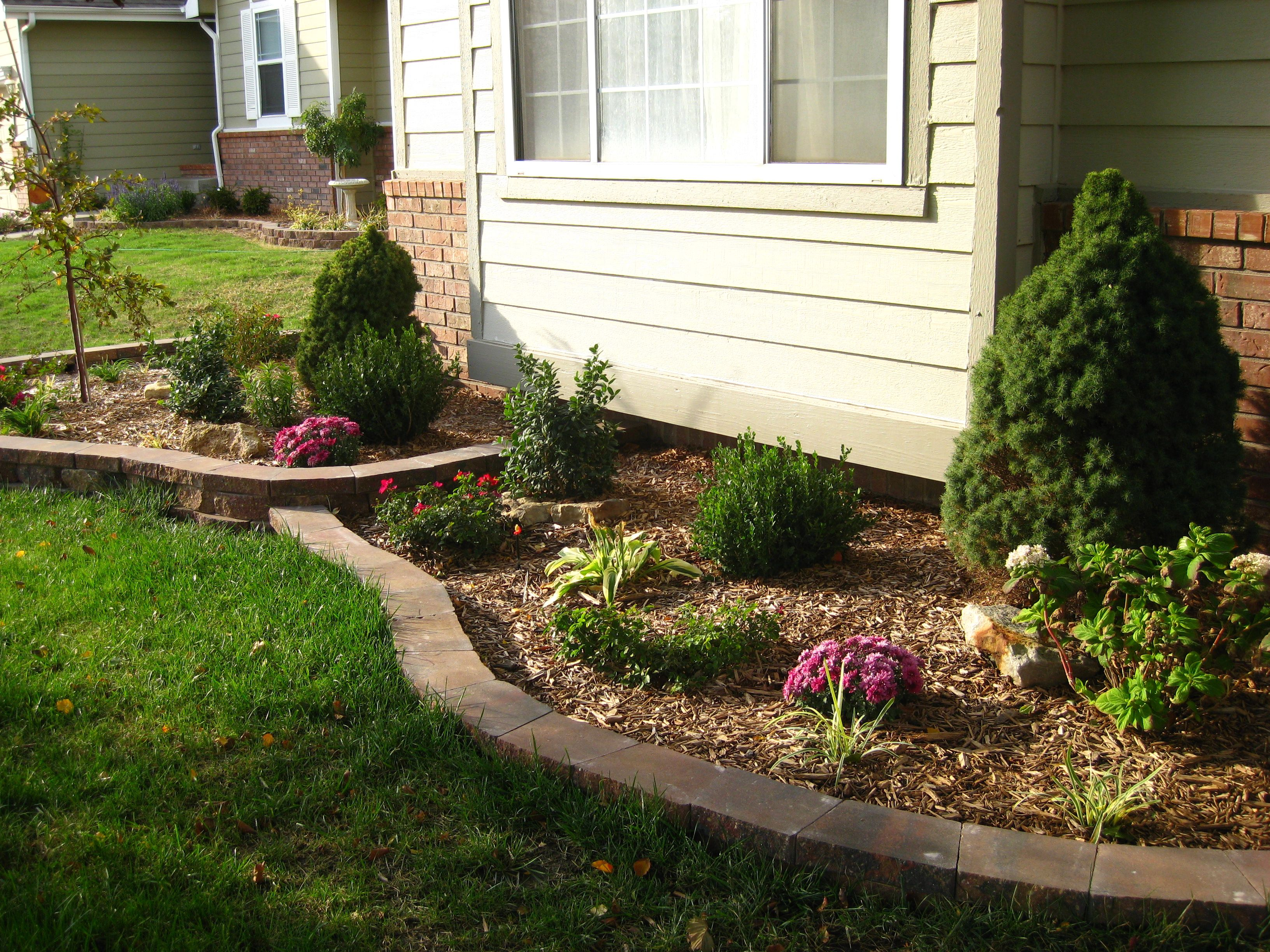 Perennial flower bed, facing south (1st year, fall
