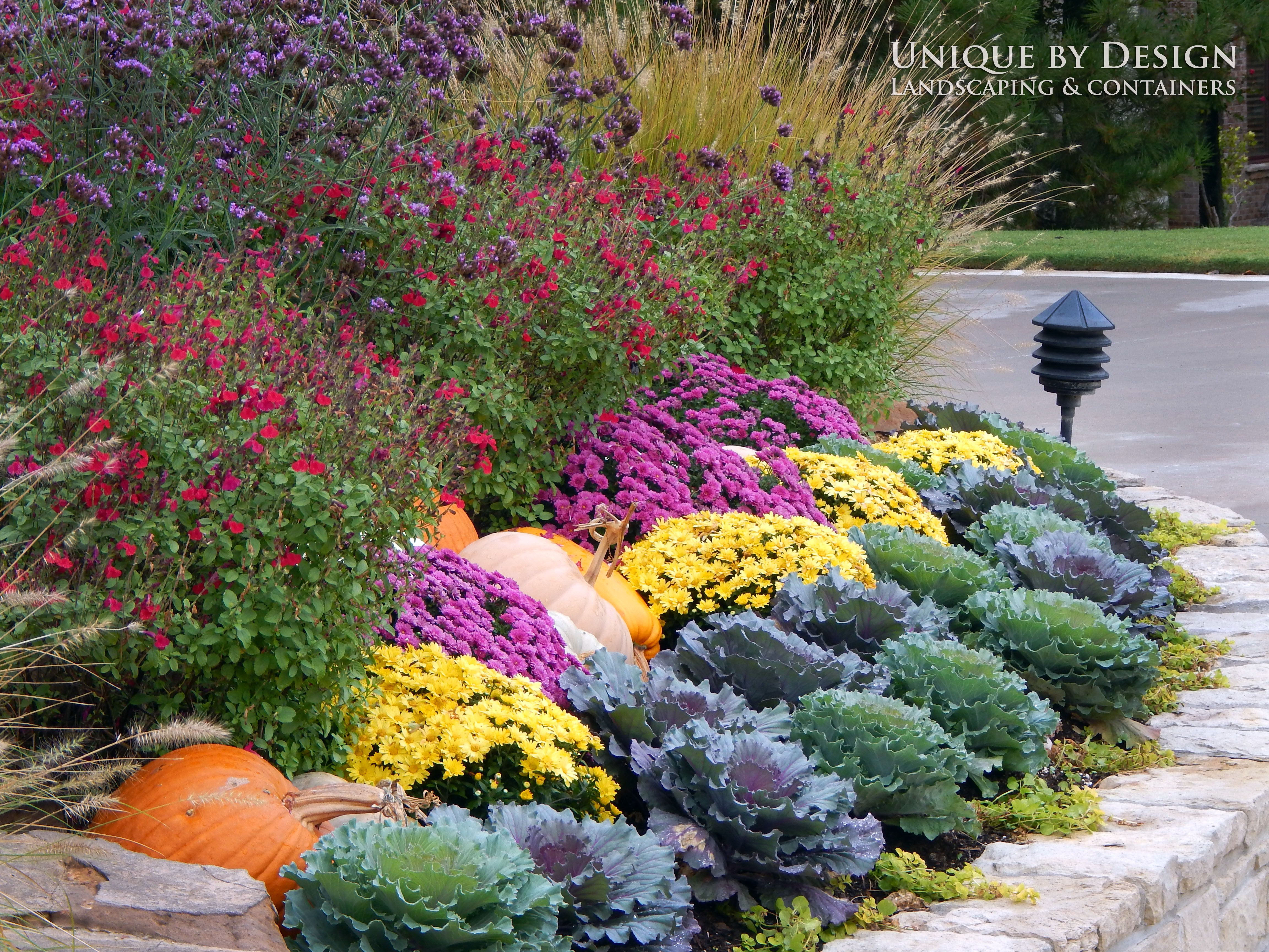 Fall Plantings L Unique By Design Fall Plants Fall Landscaping Plants