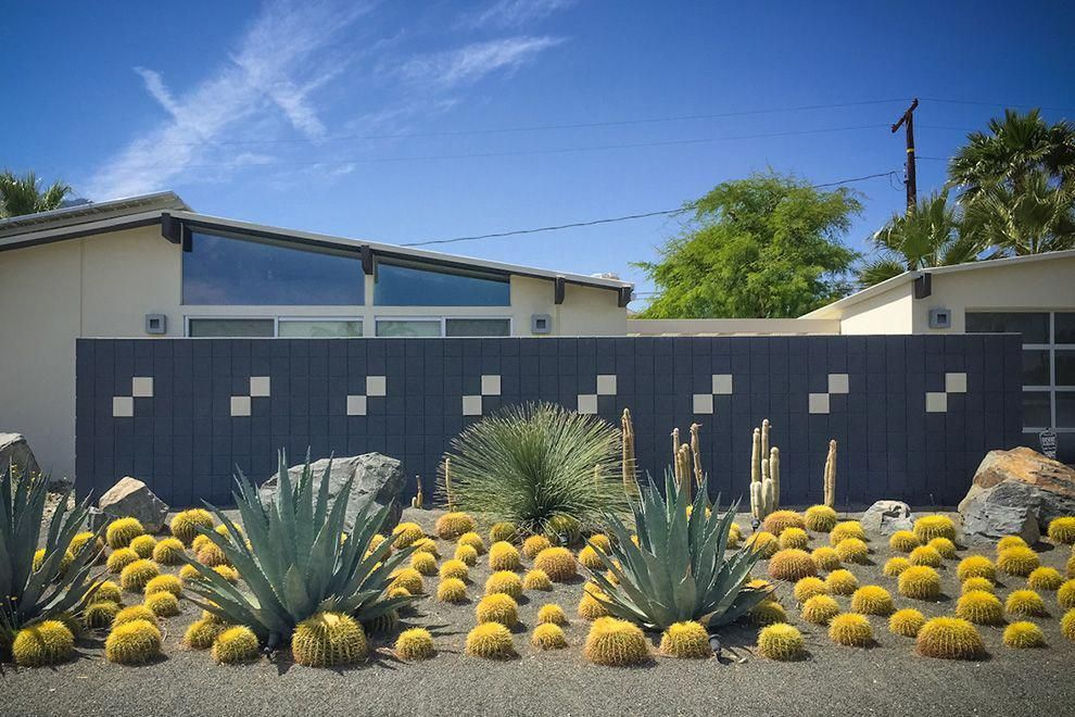 Contemporary Desert Landscaping planted with Various Kind of Cactus