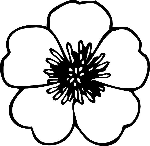 black, green, large, simple, small, outline, drawing