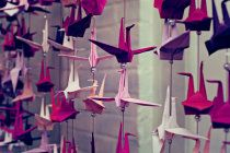 A Japanese tradition that promises anyone who folds a thousand origami cranes will be granted a wish by a crane. May a thousand years of happiness and prosperity be brought upon us.