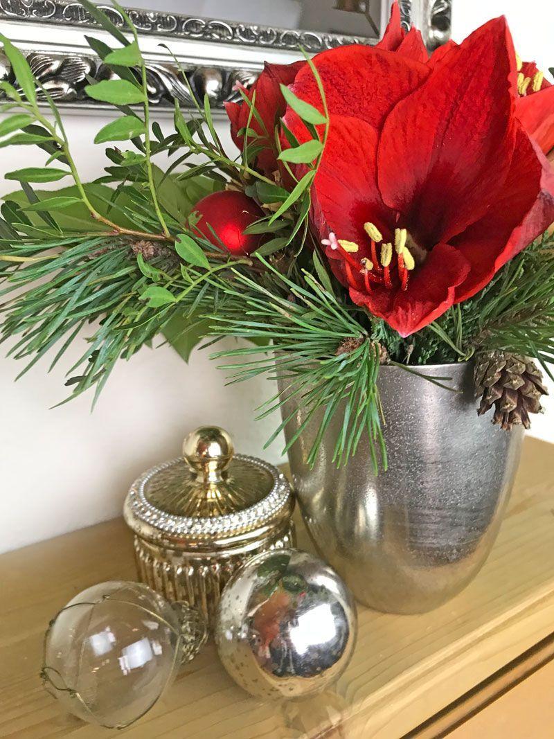 Die Amaryllis Weihnachtlich in Rot! #amaryllisdeko Die Amaryllis Weihnachtlich in Rot! #amaryllisdeko