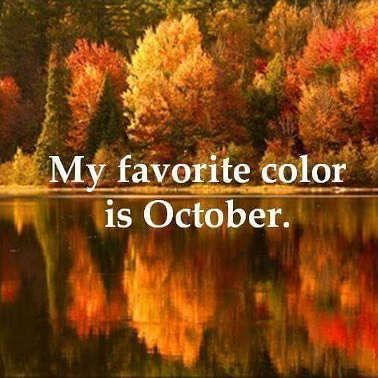 Happy October I Love This Time Of Year Fall October Autumn Weather Canada Colours Autumn Scenery Scenery Nature