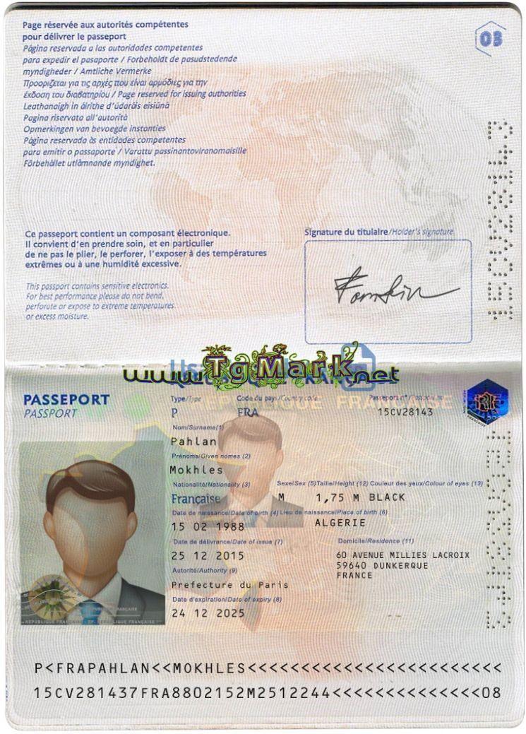 France Passport Template Psd Photoshop Passport Template Templates Signature Fonts
