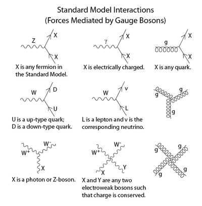 Standard model elementary particles interactions feynman diagrams standard model elementary particles interactions feynman diagrams ccuart Gallery