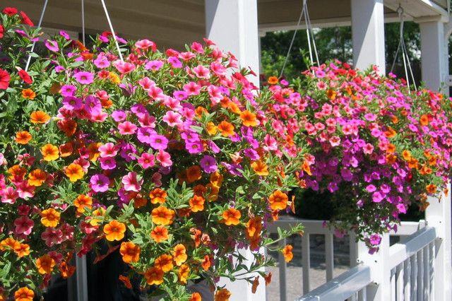 fotos de jardines hermosos - Buscar con Google jardin Pinterest - Jardines Hermosos