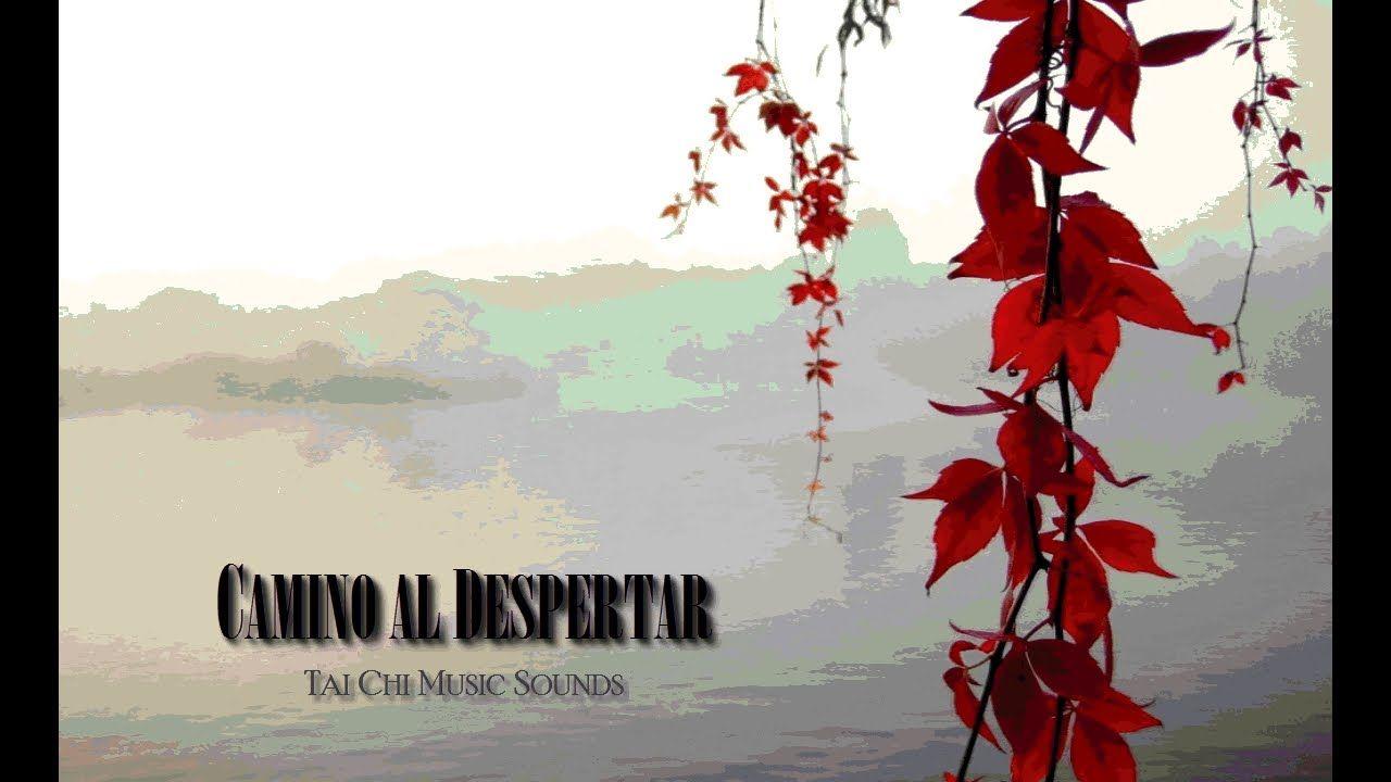 Tai Chi Music Sounds | Evanino com | Tai chi, Learn tai chi, Tai chi