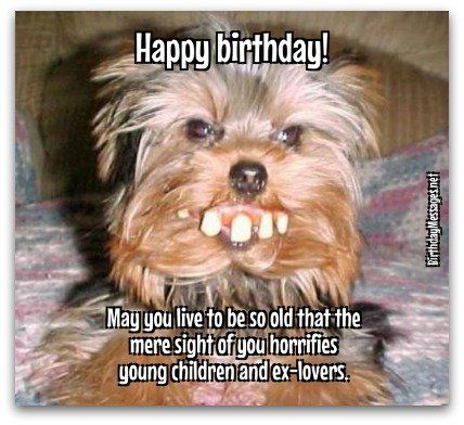 HaPpY BiRtHdAy Happy Birthday Pinterest – Funny Happy Birthday Greetings for Men