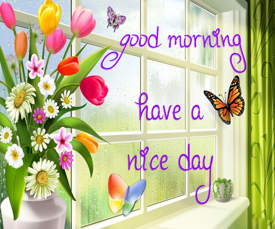 Good Morning Have A Nice Day Morning Good Morning Morning Quotes Good  Morning Quotes Morning Quote Good Morning Quote