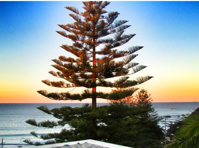 Sunrise Port Macquarie
