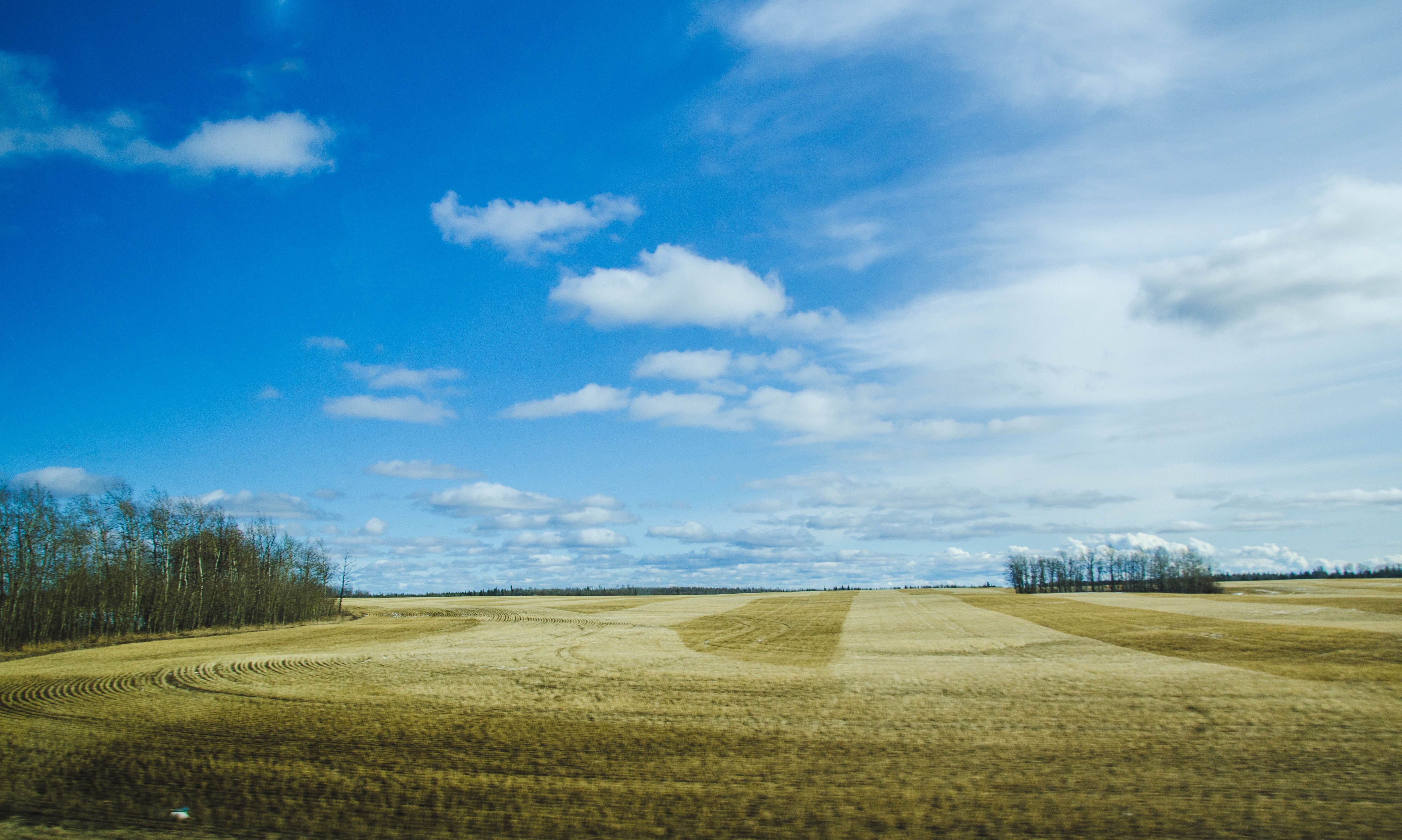 that big blue Alberta sky. outside Peace River, Northern Alberta