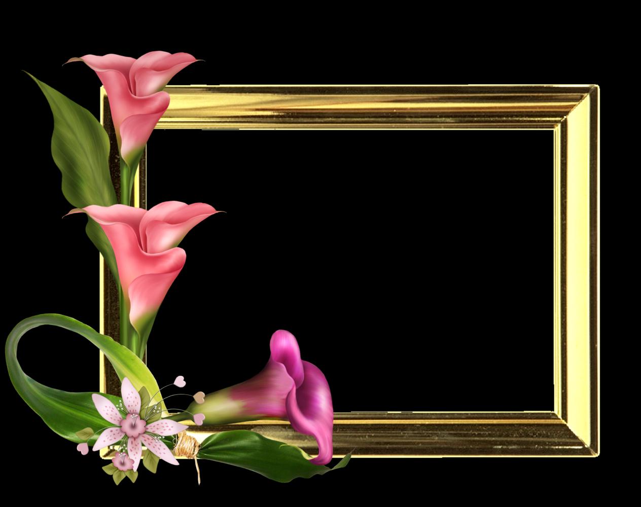 Marco De Primavera Google Da Ara Flower Frame Paper Background Background For Photography