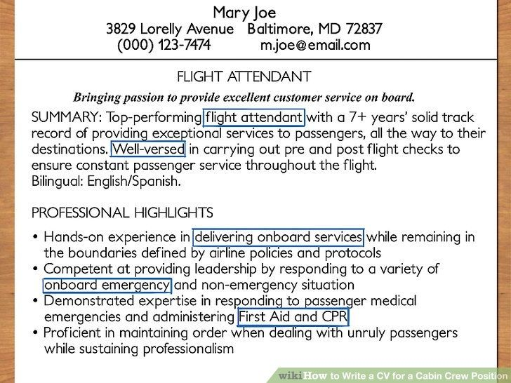 Awesome cv template for cabin crew collection how to write