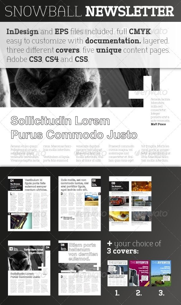 newsletter template for pages