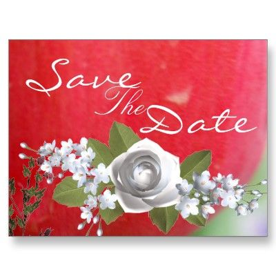 "Red Red Tulip Save the Date Postcards  ""Todays Best Award"" from Zazzle  September 27, 2010"