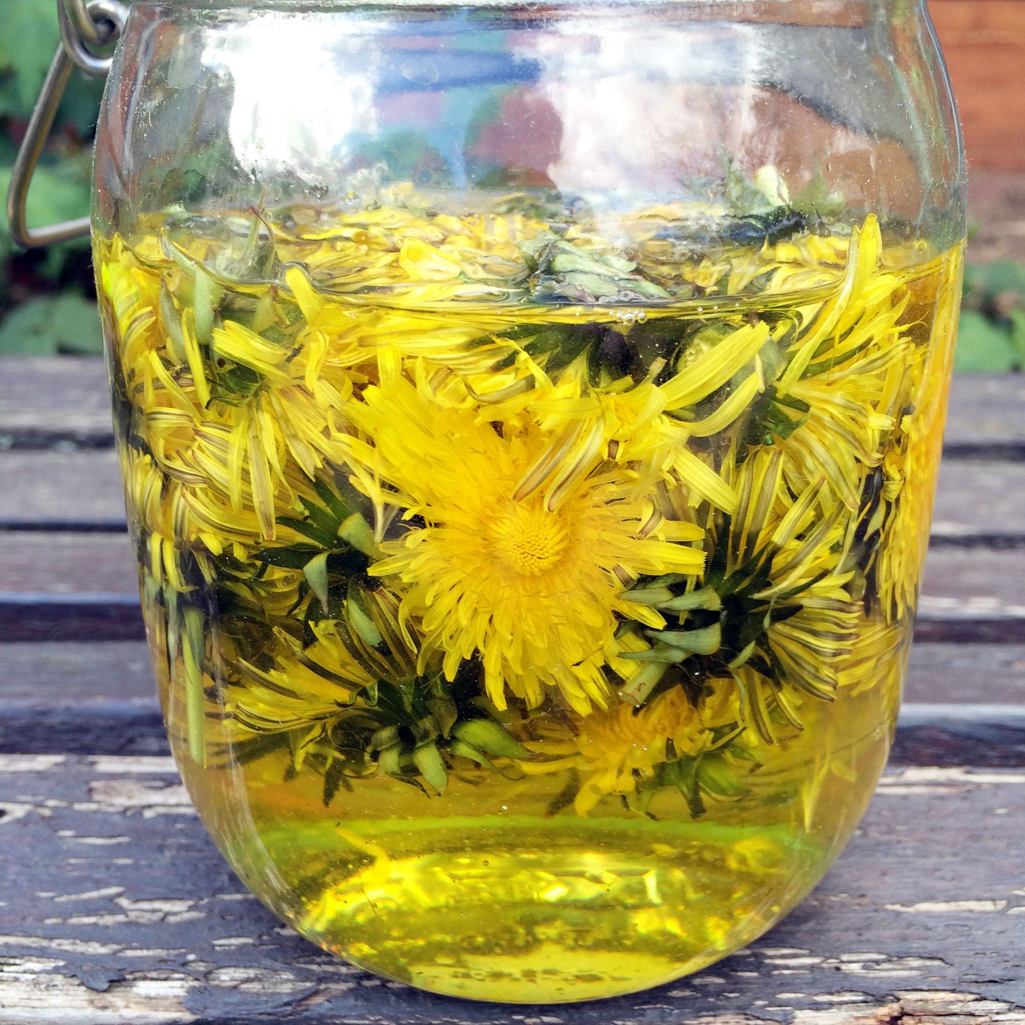 Dandelion infused oil Recipe in Lúcuma 08