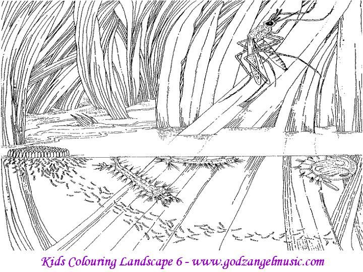 Landscape Coloring Pages For Adults | Our online shop is a safe and ...
