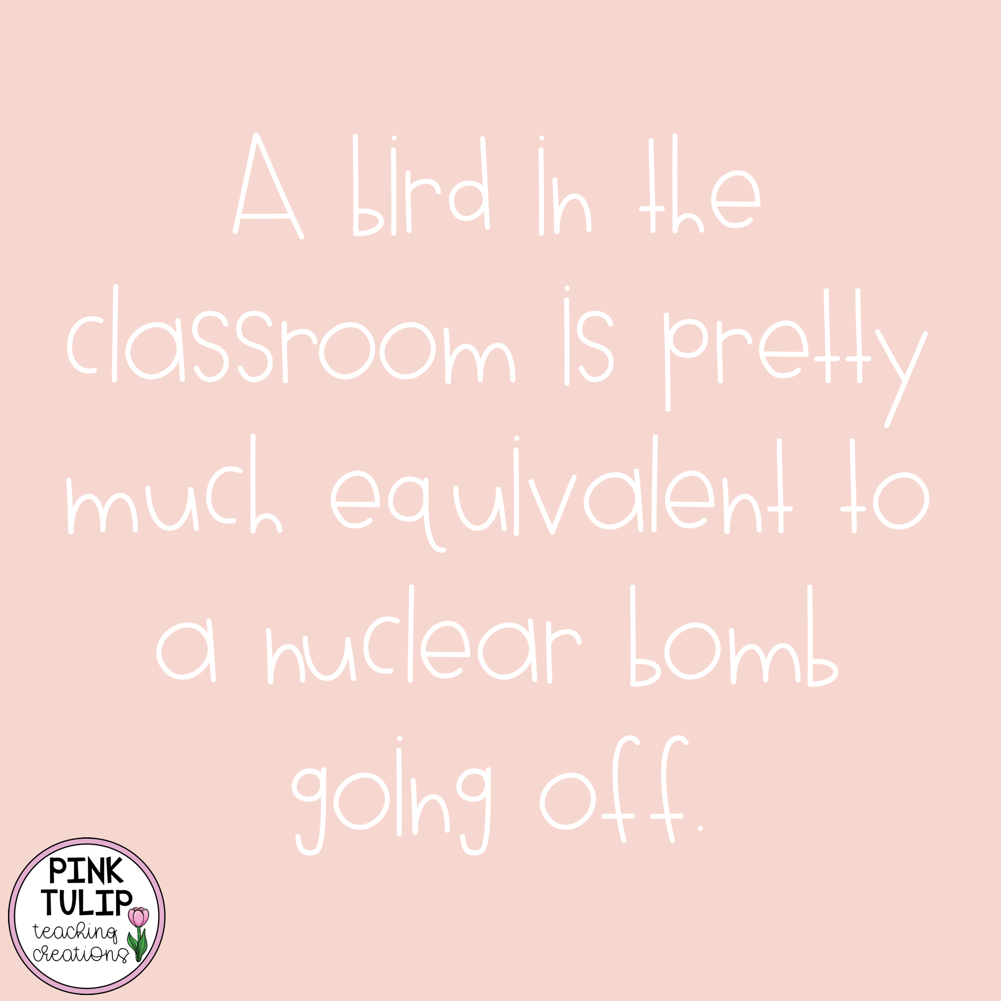 A Bird In The Classroom Is Pretty Much Equivalent To A