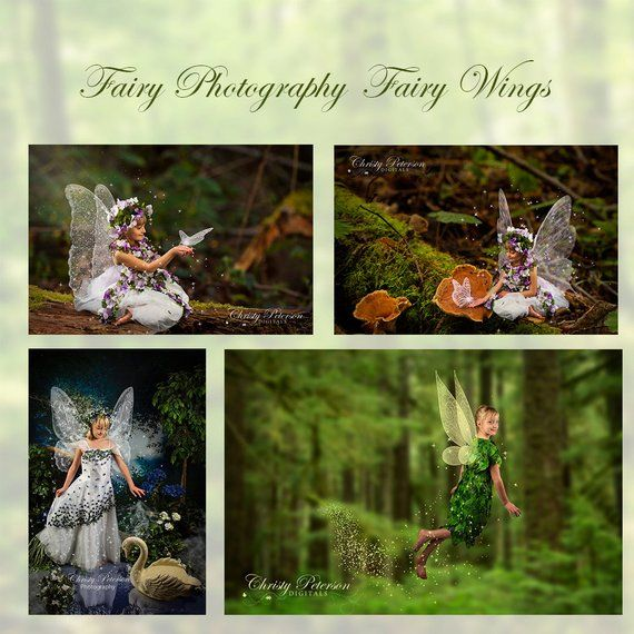 11 Fairy Wings Photoshop BRUSHES SET 1 Including A Tinker Bell Wing