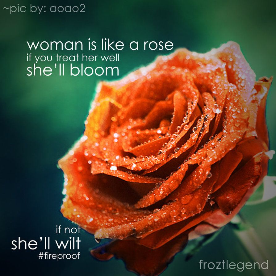 Woman Is Like A Rose Rose Quotes Rose Love Quotes Women Be Like