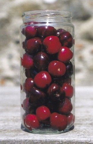 fanyar cseresznye zsírvesztés